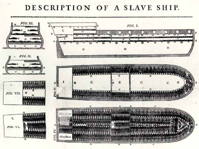 Drawing of Interior of an African Slave Ship